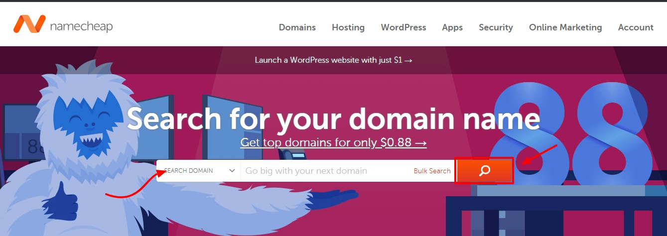 buying a domain name at namecheap